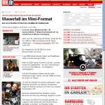 MiWuLa-Artikel auf Bild.de am 30.9.2008